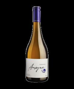 Garces Silva Amayna - Chardonnay